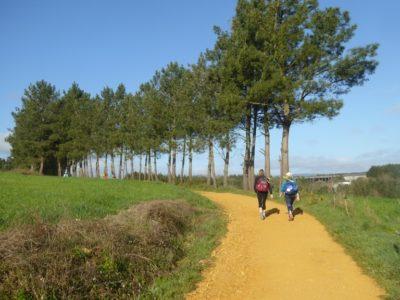 Women walking the Camino de Santiago
